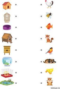 Chacun chez soi, jeu éducatif pour enfants de 4 ans et plus