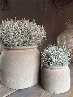 - Garten deko - Brynxz majestic potten – World ♡ Design – world - Decoration Inspiration, Garden Inspiration, Decor Ideas, Jardin Decor, Deco Champetre, Estilo Interior, Home Remodel Costs, Deco Floral, Ceramic Pots