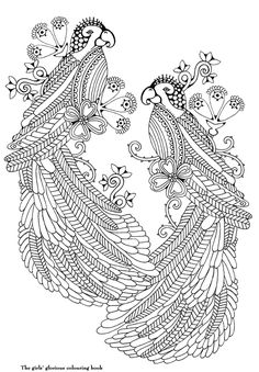 """Two birds from """"The Girls Glorious Colouring Book"""" 