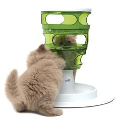 """This food tree so your cat can """"hunt"""" for food. 