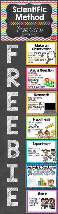 7 FREE & Fabulous Scientific Method Posters for your classroom. 7 FREE & Fabulous Scientific Method Posters for your classroom. 7th Grade Science, Middle School Science, Elementary Science, Science Classroom, Teaching Science, Science Education, Physical Science, Teaching Ideas, Classroom Ideas
