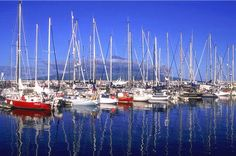The city of Horta on Faial Island, is a stopover for sailors making the crossing of the Atlantic Ocean. Photo © ATA