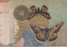 """""""Winged""""  2015.  4 1/2"""" x 6 1/2"""" .  The moths come from a very old book of butterflies & moths, early 1900's."""