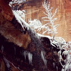 Here are the roads and trails update from in and around Zion National Park: The Weeping Rock Trail is closed due to falling ice. The Riverside Walk is closed due to falling ice. The Lower Emerald Pools Trail is closed from the trailhead bridge to the junction with the Kayenta Trail due to multiple active rock falls. The Middle and Upper Pools can still be accessed via the Kayenta Trail. The northernmost section of the Sand Bench Trail, closest to the Emerald Pools bridge and directly across…