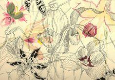 Mon Jardin de Chaumière by Isabel Kwon, via Behance