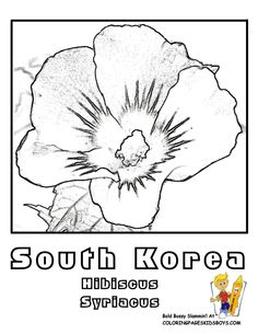 81_flower_hibiscus_syriacus_s korea_colouring_picture_at_coloring pages book for kids boysgif south korea