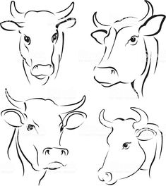 cow simple cows drawings easy drawing outline sketch animal painting pencil abstract istockphoto cattle