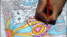 Colouring Video sample. Creative Cats Speed Colour.