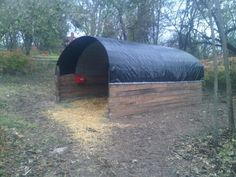 Emergency/Temporary Shelter I built for our rescue horses