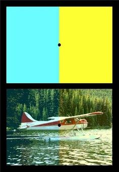"Stare at a special image for a period of time and then look at another image that has color differences and what happens? In the ""Now You See It, Now You Don't: A Chromatic Adaptation Project"" #science project, students explore chromatic adaptation to see how quickly it can occur and how long it lasts. [Source: Science Buddies, http://www.sciencebuddies.org/science-fair-projects/project_ideas/HumBeh_p008.shtml?from=Pinterest] #STEM #scienceproject"