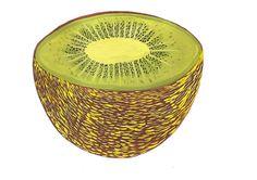 Caroline dowsett - gouache kiwi
