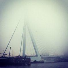 Erasmus brug | Rotterdam | barbaravisser on Instagram