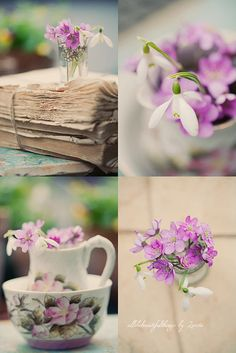 A Touch of Spring Beautiful Collage, Beautiful Flowers, Purple Spring Flowers, Collages, Spring Aesthetic, Decoupage, Shades Of Purple, Purple Colors, Collage Design