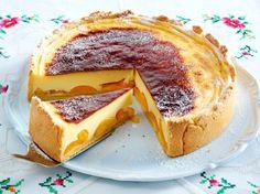 Sahniger Puddingkuchen mit Aprikosen Rezept
