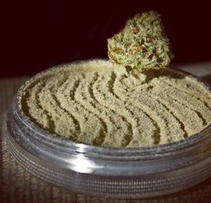 Buy Weed Online - Weed for Sale-Order Weed Online Usa Cannabis Growing, Cannabis Oil, Marijuana Plants, Medical Marijuana, Weed, Ethnic Recipes, Farms, San Diego, Lab