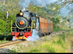 153-1M EF Dona Teresa Cristina Steam 2-8-2 at Between Urussanga and Tubarao, Brazil by Daniel SIMON