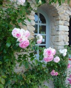Raindrops and Roses Pink Roses, Pink Flowers, Raindrops And Roses, Stone Cottages, Ideas Geniales, Climbing Roses, Rose Cottage, Dream Garden, Pink Garden