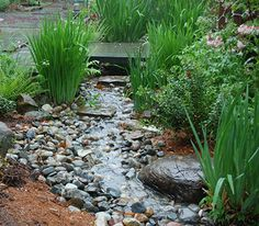 Rain gardens are vegetated depressions in the landscape designed to capture, detain and release, and/or infiltrate where feasible, stormwater runoff from roofs, parking lots or other  adjacent areas. Rain gardens capture water that will slowly infiltrate into the ground or return to the atmosphere through evapotranspiration from plants.  Rain gardens are also referred to as 'Bio-infiltration Basins and 'Bio-retention Basins'