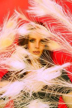 Neil Krug Photoshoot for Ultraviolence 2014 #2