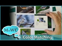 Green is everywhere, especially in landscape, floral and botanical painting. Here is a technique to make your watercolor trees and foliage look more lively a...