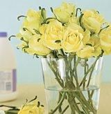 Do your fresh flowers start drooping after a couple days? A few drops of bleach can prevent mildew growth and keep stems from decaying.