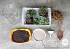 Como fazer um terrário - Plantas em vidros - Dicas e passo a passo com fotos - terrarium - Tutorial with pictures - DIY - Madame Criativa - www.madamecriativa.com.br