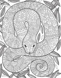 Pin By Rebecca Kirby On Coloring Book