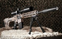 I'm thinking my next build should be a 308/ AR-10 Style Either this- DPMS PANTHER REPR 7.62mm, a Rock River, or Colt.