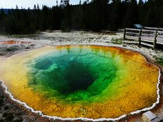 Morning Glory pool, Yellowstone National Park, USA