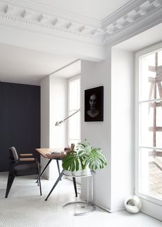 Grey accent wall | Source: Anne-Claire Rohé