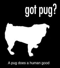 got pug? t-shirt