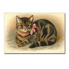 Tabby Victorian Cat