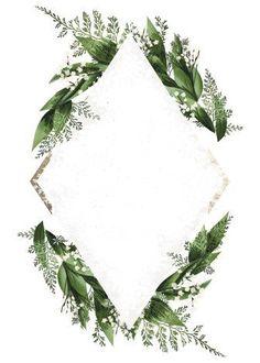 Framed Wallpaper, Plant Wallpaper, Flower Backgrounds, Wallpaper Backgrounds, Wallpapers, Wedding Cards, Wedding Invitations, Shower Invitations, Logo Floral
