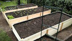 Vyvýšené záhony - foto návod – Z mojí kuchyně Terrarium, Plants, Diy, Gardening, Vegetable Garden, Garden, Compost, Terrariums, Bricolage