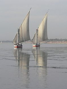 Feluccas on the Nile...It was so peaceful watching them! I loved our cruise!  Egypt Travel  For Information Access our Site   https://storelatina.com/egypt/travelling #egypttravelholidays #beach #Egyptaland #egypttravelnilecruise
