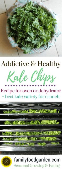 Healthy Kale Chips, Homemade Kale Chips, Dehydrated Vegetables, Veggies, Raw Kale Chips Recipe, Homemade Jerky, Kale Chip Recipes, Raw Food Recipes, Vegan Recipes