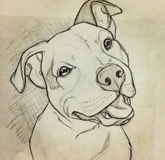 Animaldrawings hunde ideen neue pitbull zeichnen 65 neue ideen hunde zeichnen pitbull hunde zeichnen adorable drawings of dog breeds grouped by their place of origin Pencil Art Drawings, Easy Drawings, Dog Drawings, Cute Drawings Of Animals, Drawing Animals, Sketch Art, Drawing Sketches, Drawing Ideas, Drawing Tips