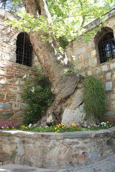 Hallowed ground!! House of Virgin Mary, Ephesus, Turkey.