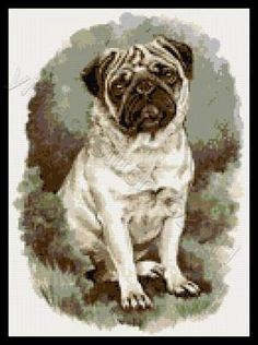 Pug cross stitch kits