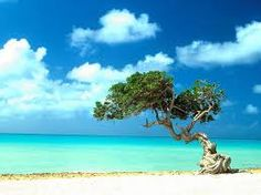 www.andamantourism.com  fascinating beaches of Andaman making the traveler to be enjoy moments there. Really awesome water space and landscape of Andaman beaches.