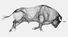 Drawings of Bulls Made from Continual Contours - mashKULTURE