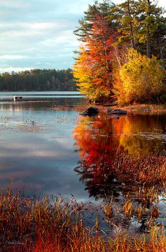 New England Autumn; photo by Shelle Ettelson