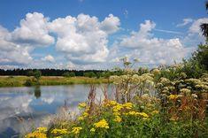 красивые фото природы пейзажи лето картинки: 14 тыс изображений найдено в Яндекс.Картинках