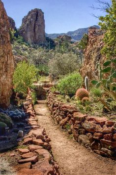 Boyce Thompson Arboretum State Park Trail - Arizona