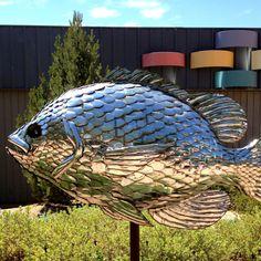 Chrome fish, Palisade, Colorado