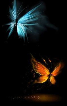 June-Native American zodiac/Gemini-Element -Fire and clan totem -The Butterfly & birth colors Blue and Orange & Yellow