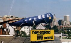 """Rhode Island ---by the side of 95 as you enter Providence. Had my granddaughter looking for the """"big blue bug"""""""