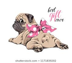 Adorable beige puppy Pug with a pink polka dot bow. Best gift ever – lettering q… Adorable beige puppy Pug with a pink polka dot bow. Best gift ever – lettering quote. Humor card, t-shirt composition, hand drawn style print. Pug Puppies, Pet Dogs, Animals And Pets, Cute Animals, Pug Cartoon, Baby Pugs, Pug Art, Tier Fotos, Pug Love