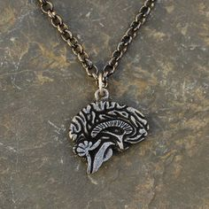 Brain necklace. You can see the corpus callosum, thalamus, hypothalamus, medulla oblongata, cerebellum, and brainstem!