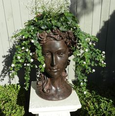grown head planter